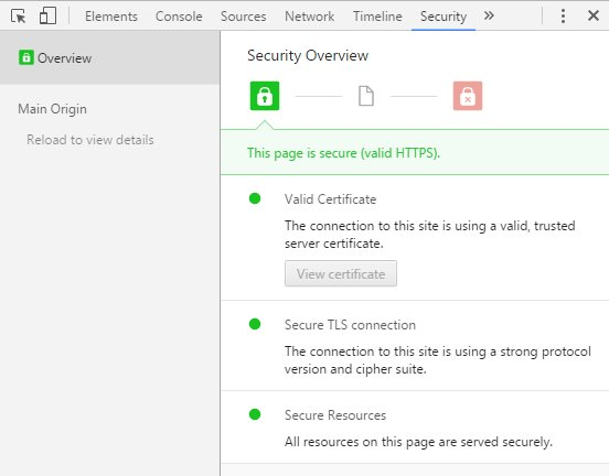 details that describe the certificate is encrypting your connection and working properly